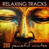 Guzheng (Asian Relaxing Sounds for Meditating)