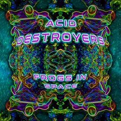Acid Destroyers - Frogs In Space Ep - Preview