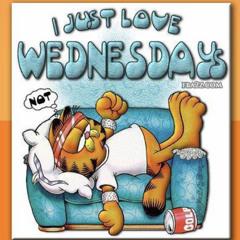I Just Love Wednesdays! (Not)