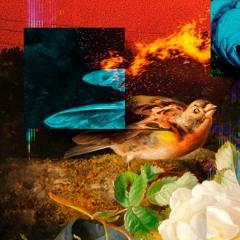 Glowal - Trigger Your Sense (EP)