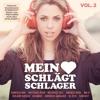Mein Herz schlägt Schlager (Stereoact Remix)