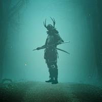 WSP - The Samurai