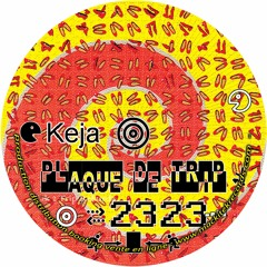 A1 Keja - Le Son Des Montagnes Remix - Plaque De Trip 2323