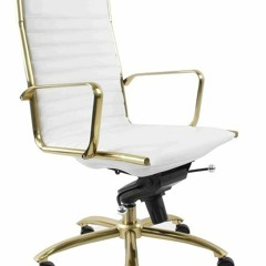 Euro Style Dirk High Back White & Brushed Gold Office Chair | Modern Office Chairs At Grayson Home