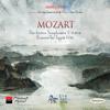 Symphony No. 40 in G Minor, K. 550: III. Menuetto (Allegretto) - Trio