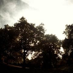 Eleven8 - Autumn (Free Download) [Chilled Liquid Dubstep]