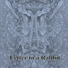 Letter To A Rabbit.