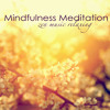 Meditation Music (Rhythmic Waves)