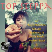 Top Steppa (A Dancehall/Reggae Mix)