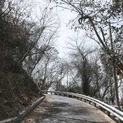 Đường Xưa | Quốc Dũng | Hoàng Trang cover