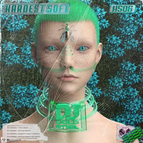 CRUDE Premiere: dJ ColdsteeL  - Intron Depot [Hardest Soft]