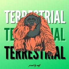 TERRESTRIAL - prod by adf - official audio