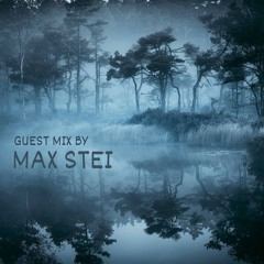 MAX STEI - Guest mix ( October 2021 )