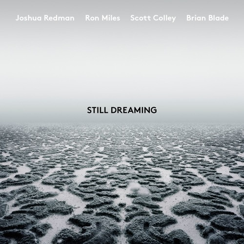 It's Not The Same (feat. Ron Miles, Scott Colley & Brian Blade)