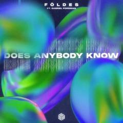 Földes - Does Anybody Know (ft. Gabriel Forsman)
