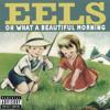 Mr. E's Beautiful Blues (Live)