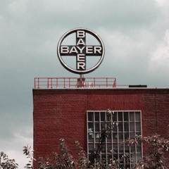 Double Standards and Hazardous Pesticides from Bayer and BASF