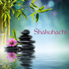 Zen Music for Deep Sleep