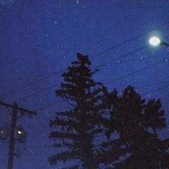 Hedge, REVENGE, forg - insomnia