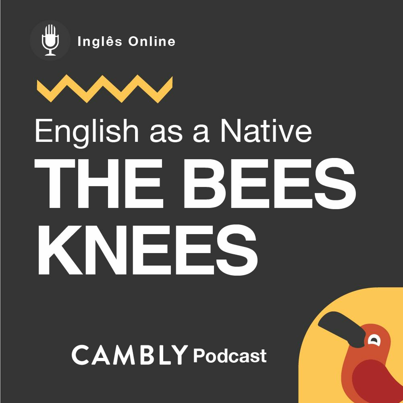 Ep 204. O que significa 'The bees knees' em Inglês? | English as a Native