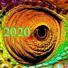 Melodic Chamäleon 2020