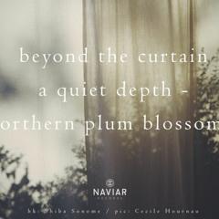 A Quiet Depth (naviarhaiku381)