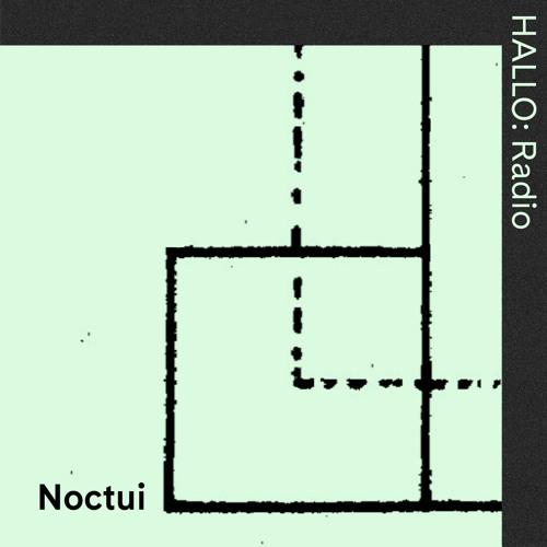 """NOCTUI"" 02 - Nika Son & Phuong-Dan - 31/05"