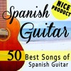 Besame Mucho (Spanish Guitar Version)