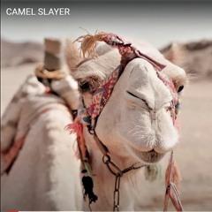 CAMEL SLAYERS § § Pezhwak and Panic together