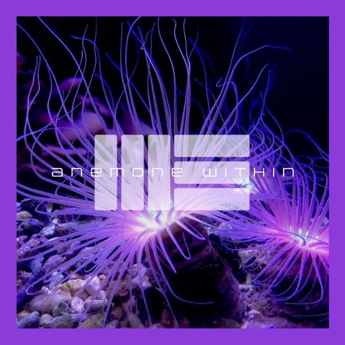 Anemone Within