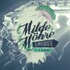 Download 13.09 FreedomB @ Wilde Möhre Festival 2020 (Wildschreck Floor) Mp3