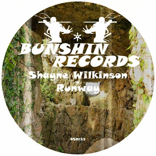 Shayne Wilkinson - Runway