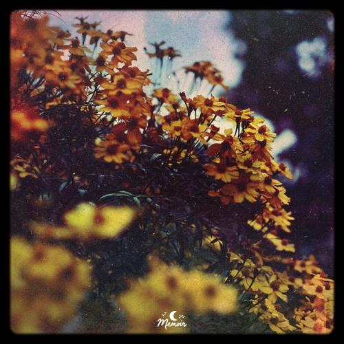 Sundreamer & edapollo - unwind tape 🌸