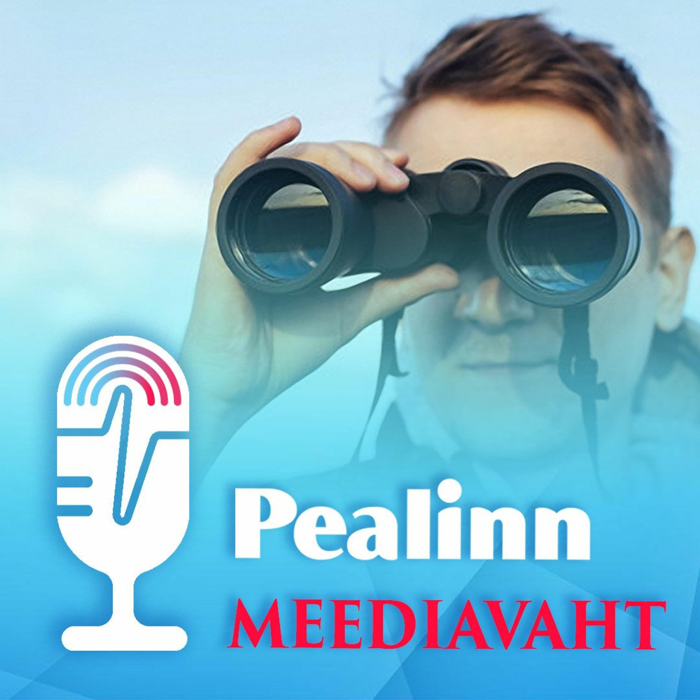 Meediavaht 26