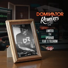 DJ DOMINATOR - BUSINESS MAN  (Upgrade Remix)