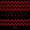 Michael & Levan & Stiven Rivic - Gamma Rays (Mononoid Overseas Rework)