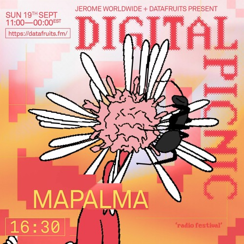 JEROME WORLDWIDE DIGITAL PICNIC - MAPALMA