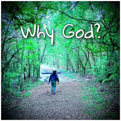 Why God? (feat. Sarah Bosworth)