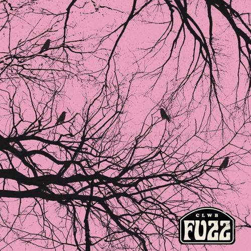Clwb Fuzz - No Heaven