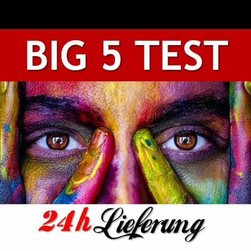 Der Big Five Test von Jordan Peterson auf Deutsch (Aspektskala - Psychologie-Modell)