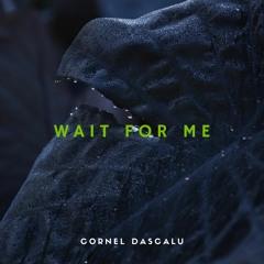 Cornel Dascalu - Wait For Me