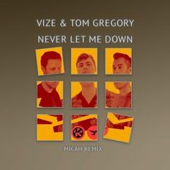 Vize & Tom Gregory - Never Let Me Down (MICAH Remix) *FREE DOWNLOAD*