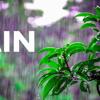 Hello - RAIN