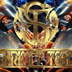 Hồi Tâm Chuyển Ý Ver 2 - TH Remix ( Shrimpp Team )