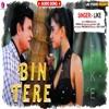Download Bin Tere Mp3