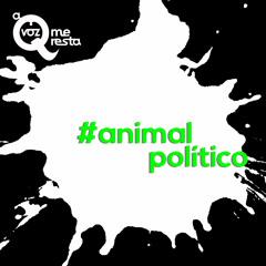 3# Animal Político