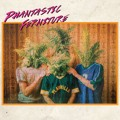 Phantastic Ferniture Fuckin 'n' Rollin Artwork