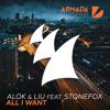 Alok & Liu feat. Stonefox - All I Want