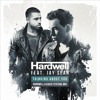 Thinking About You (Hardwell & Kaaze Festival Mix)