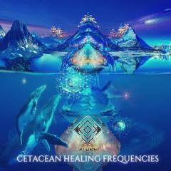 ALUNA - ✨Cetacean Healing Frequencies✨ 🐬 🐳